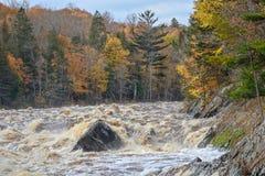 St Louis River stroomversnelling in Jay Cooke State Park in Minnesota in de Herfst stock foto's