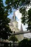 St.- Louiskathedrale Stockfotos