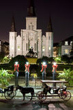 St.- Louiskathedrale-Nacht Lizenzfreie Stockfotos