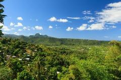 St Lucia Rainforest Stock Photo