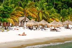 St Lucia - recuo da praia do Jalousie imagem de stock