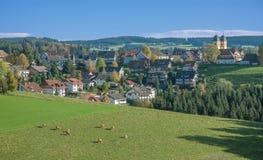 St.Maergen Schwarzwald, svart skog, Tyskland Fotografering för Bildbyråer