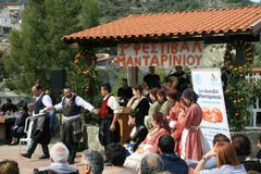 1st Mandarin festival in Dierona village, Cyprus royalty free stock images