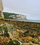 St Margarets all'alga della spiaggia della ghiaia di Cliffe e Tidepools lungo le scogliere bianche di Dover in Gran Bretagna Immagine Stock