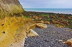 St. Margarets an der Cliffe-Kies-Strand-Meerespflanze und Tidepools bei Ebbe entlang Dover Straits in Großbritannien Lizenzfreies Stockbild