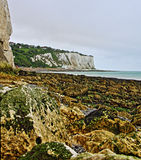 St. Margarets an der Cliffe-Kies-Strand-Meerespflanze und Tidepools entlang den weißen Klippen von Dover in Großbritannien Stockbild