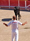 St marie de la mer of bullfighting camargue Stock Photography