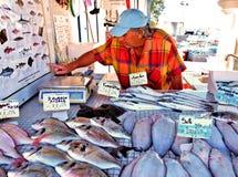 St marie de la mer fish market Stock Images