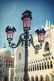 St. Mark square pigeons and lamps, Venice, Italy Stock Photos