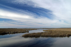 St. Marks National Wildlife Refuge Stock Photo