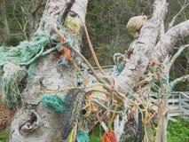 St Martins Beach image libre de droits