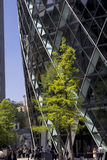 St Mary Axe et les gens dehors Photographie stock