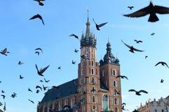 St. Mary Basilica, Krakow Stock Photography