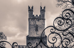 St Mary Cathedral tower Royalty Free Stock Photos