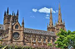 St Mary Kathedraal in Sydney Royalty-vrije Stock Afbeeldingen