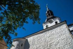St Mary Kathedraal, Tallinn, Estland Stock Foto's