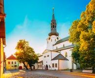 St Mary Kathedraal, Tallinn (Koepelkerk) Stock Afbeeldingen