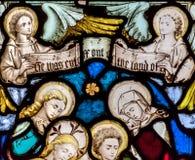 St. Mary Redcliffe Stained Glass Close herauf G stockbilder