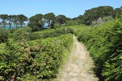 st mary s майны островов страны scilly стоковое фото