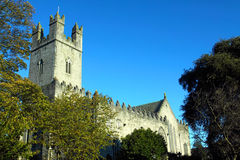 St. Mary's Cathedral Limerick City Ireland. On a bright winters day Stock Photography