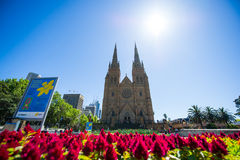 St Mary's Cathedral, Sydney, Australia Stock Image