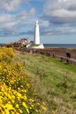 St Mary`s Lighthouse and causeway Royalty Free Stock Image