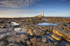 St Mary's Lighthouse near Whitley Bay in Northumberland at sunse. A warm sunset rakes across the rocks revealed by a low tide at St Mary's Lighthouse Royalty Free Stock Images