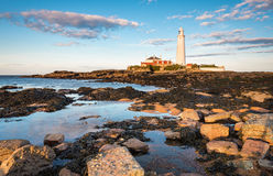 St Mary`s Lighthouse Rock Pools Royalty Free Stock Photo