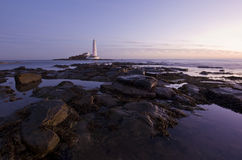 St Mary's Lighthouse at sunrise in purple Royalty Free Stock Images