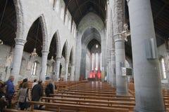 St Maryjny ` s gothic katedralny Irlandia Fotografia Stock