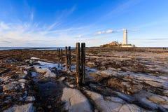 St marys vuurtoren Stock Fotografie