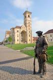 St Michael Cathedral in Alba Iulia-vesting Stock Fotografie