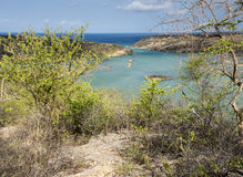 St Michiel and Boca Sami. A beautiful lake on the island of Curacao Stock Images