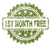 Grunge Textured 1ST MONTH FREE Stamp Seal. 1ST MONTH FREE stamp seal watermark with rubber print style. Green rubber print of 1ST MONTH FREE title with grunge stock illustration