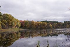 St. Moritz Pond, Quincy MA, in the autumn. Seen here on a somewhat cloudy day, St. Moritz Pond is an artificial pond in the Quincy section of the Blue Hills royalty free stock photography