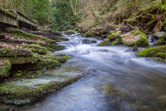 St Nectans Glen Royalty Free Stock Photo