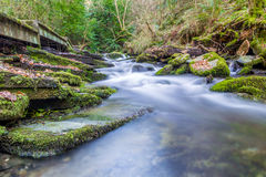 St Nectans Glen Stock Photo