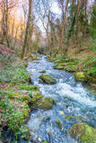 St Nectans Glen Royalty Free Stock Images