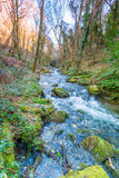 St Nectans Glen Stock Images