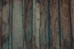 St?ng sig upp av v?ggen som g?ras av tr?plankor royaltyfri fotografi