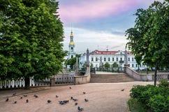St Nicholas Cathedral en duiven Stock Foto
