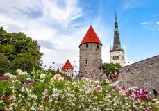 St Olaf's Kościelny wierza i ściany stary Tallinn, Estonia fotografia stock