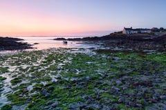 St. panny młode Trzymać na dystans przy niskim przypływem, Pembrokeshire, Walia Zdjęcia Royalty Free
