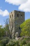 St par ruine Sigtuna d'église images stock