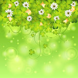 St. Patrick Day Frame Royalty Free Stock Image