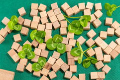 St. Patrick decoration with clover and wooden cubes Stock Photography