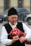 St Patrick Tagesparade Lizenzfreies Stockbild