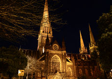 St patrick's cathedral Stock Photography