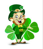 St. Patrick`s character is on the background of shamrocks Stock Images