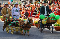 St Patrick's Day. LIMERICK, IRELAND - MARCH 17: Unidentified people with pony on the parade od St. Patrick's Day Stock Photos